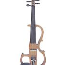 An Electric Violin by Jennifer Gibson