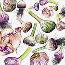 A Grouping of Garlic by Jennifer Gibson