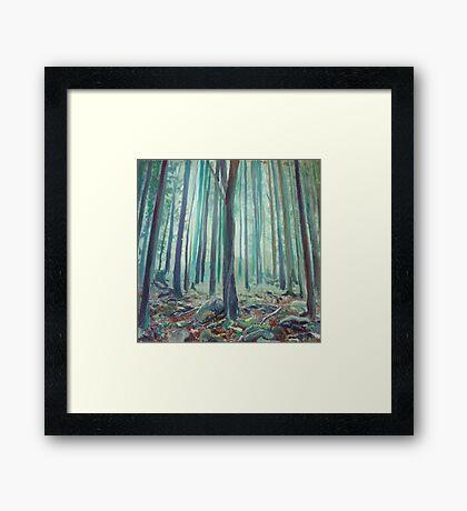 Home Grown Colours Framed Print
