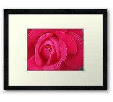 Blossom_1306 Framed Print