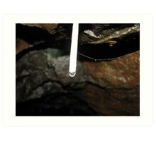 A straw extending, Washington mine, Tarkine, western Tasmania Art Print