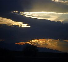 Arizona Rain Clouds by down23