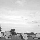 Large Rocks by Adam Nicholson
