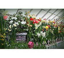 Flower Show Time! Photographic Print