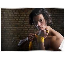 Malaysian boxer Poster