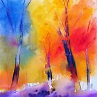 Color symphony in the woods by Alessandro Andreuccetti