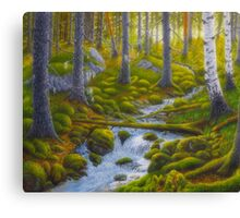 Spring creek Canvas Print