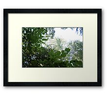 Forest_1302 Framed Print