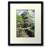 Forest_1315 Framed Print