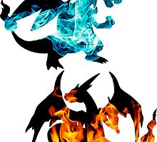Mega Charizard X and Y used Blast Burn by Gage White