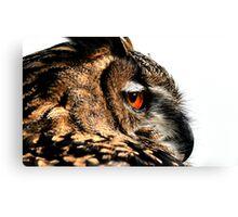 Eagle owl up close Canvas Print