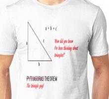 I'm Pythagoras Unisex T-Shirt