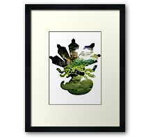 Zygarde used Camouflage Framed Print
