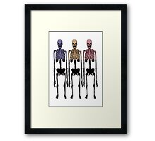 3 Multi Coloured Skeleton, Cool Hipster Original Two Tone Framed Print