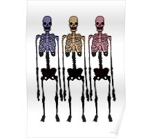 3 Multi Coloured Skeleton, Cool Hipster Original Two Tone Poster