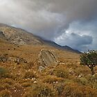 in the highlands of Crete by Pixmover