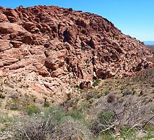 Red Rock Canyon Scenery by WestCoastEden