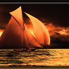 The Schooner by Richard  Gerhard