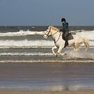 White Horses by Jon Lees