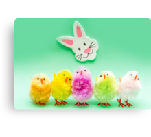 Easter Chicks and Rabbit Canvas Print