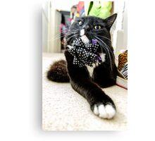 Funny Cool Cat Canvas Print