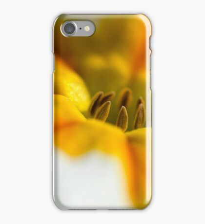Heart of white and gold iPhone Case/Skin