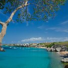 Curacao Beach by barkeypf