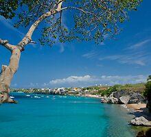 Curacao Beach by barkeypf