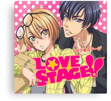 Love Stage Canvas Print