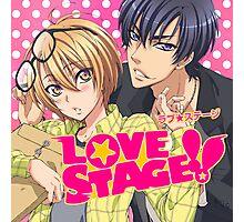 Love Stage Photographic Print