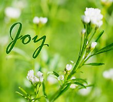 Joy by KellyHeaton