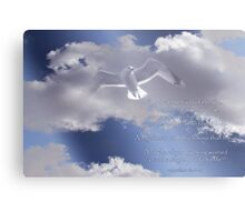Seagull with Matthew 6:26-27 in White Letters Metal Print