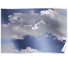 Seagull with Matthew 6:26-27 in White Letters Poster