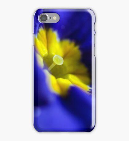 Burst of colour iPhone Case/Skin