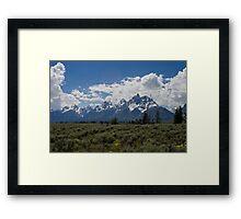 A Sunny Day at Grand Teton National Park Framed Print