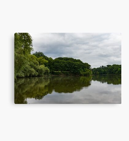 Green and Gray Summer Mirror Canvas Print