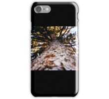 Tree case iPhone Case/Skin