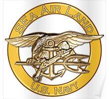 Navy SEa Air Land (SEALs) Poster