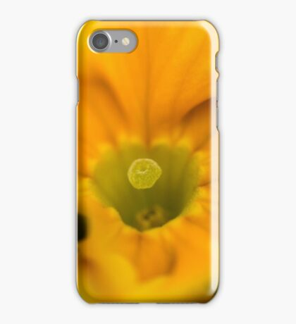 Golden blaze iPhone Case/Skin