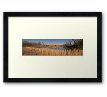 Spring in the Country Framed Print