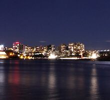 Sydney Harbour from Balmain East Wharf by Harry Roma