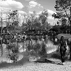 Auburn Botanical Gardens by Harry Roma