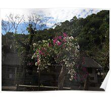 spring IV - primavera Poster
