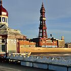 View of Blackpool Tower on North Pier by Steve