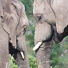 Thato & Thandi by LeaGerard