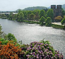 River Ness - Inverness - Scotland by Arie Koene