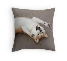 shiba rock Throw Pillow