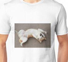 shiba rock Unisex T-Shirt