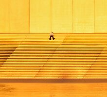 Isolated on Gold by Steve