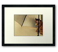 Super model and the umbrella... Framed Print